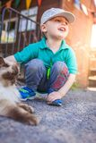 Boy close encounters with a cat. Portrait of a happy little boy stroking cat ears on the farm royalty free stock photo