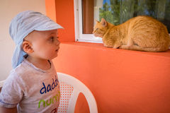 Boy close encounters with a cat Royalty Free Stock Images