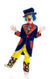 Boy clown standing over the white background Royalty Free Stock Images
