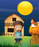 A boy collecting eggs in the evening Stock Image