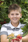 Boy collects berries of viburnum in the garden Stock Photos