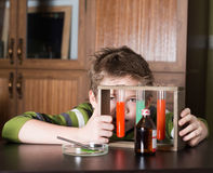 The boy with colorful flasks Stock Photography
