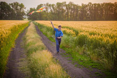 Boy with colorful kite on wheat field Stock Photos