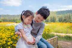 Boy is comforting his crying sister in park Royalty Free Stock Photography