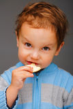 Boy with a cookie. Little boy in a blue sweater eating a cookie, in studio Stock Images