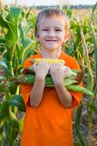Boy with the corn Royalty Free Stock Photos