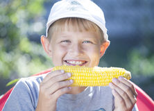 Boy with corn Royalty Free Stock Photography