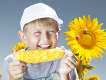 Boy with corn Stock Photography