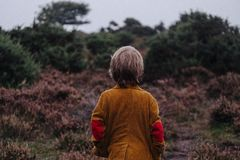 Boy in countryside Royalty Free Stock Images