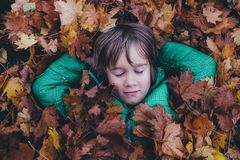 Boy Covered in Maple Leaves Stock Photography