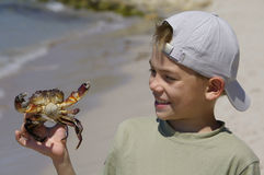 Boy and the crab royalty free stock images