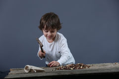 Boy cracking nuts Royalty Free Stock Photos