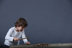 Boy cracking nuts Royalty Free Stock Photo