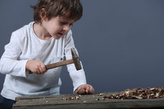 Boy cracking nuts Stock Photography