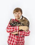 Boy cradles his tabby cat Stock Photo