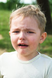 The boy cries Stock Image