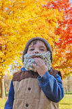 Boy with crocheted beard against Autumn foliage background Stock Photos