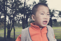 Boy crying Stock Images