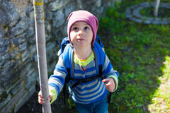 A boy curiously looking at the tree. Royalty Free Stock Photography