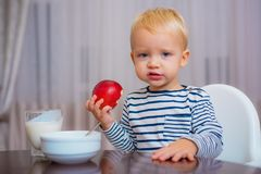 Boy cute baby eating breakfast. Baby nutrition. Eat healthy. Toddler having snack. Healthy nutrition. Vitamin concept. Child eat apple. Kid cute boy sit at stock image