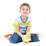 Boy with cute chickens Stock Photos