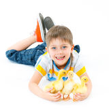 Boy with cute chickens Stock Photography