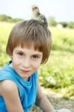 Boy cute with chiken on his head nature Stock Photos