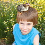 Boy cute with chiken on his head nature summerr Royalty Free Stock Photos