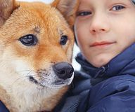 Boy and  cute dog on winter walking Stock Image