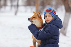 Boy and  cute dog on winter walking Stock Images