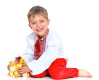 Boy with cute ducklings Stock Images