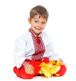 Boy with cute ducklings Stock Image