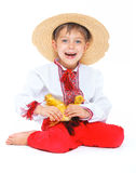 Boy with cute ducklings Royalty Free Stock Photography