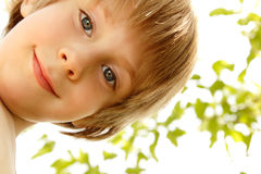 Boy cute happy summer outdoor Royalty Free Stock Photography