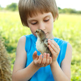 Boy cute hugs chiken in hand nature summer outdoor Stock Images