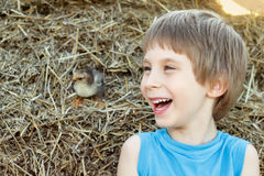 Boy cute in nature summer farm Stock Photos