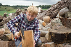 Boy Cutting a Chunk of Firewood with an Axe Stock Images