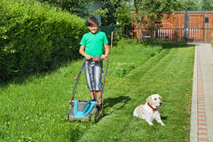 Boy cutting grass in the summer yard. His labrador doggie keeps company royalty free stock photography