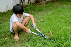 Boy cutting grass Stock Images