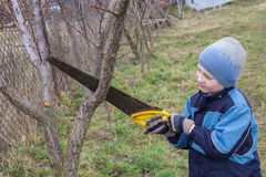 Boy cutting the tree in spring Royalty Free Stock Image