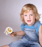 Boy with daisies stock photos