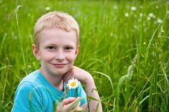 Boy with daisy. On the green field Stock Photography