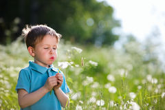 Boy with dandelion Royalty Free Stock Image