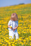 Boy with a dandelion Royalty Free Stock Images