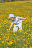 Boy with a dandelion Royalty Free Stock Photography