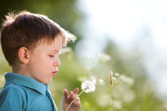Boy with dandelion. Cute 4 years old boy with dandelion outdoors at sunny summer day stock photography