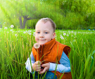 The boy with a dandelion Stock Photography