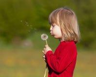Boy with a dandelion Stock Photo