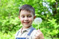 The boy with a dandelion Stock Photo