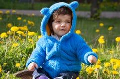 Boy in dandelion field Stock Image